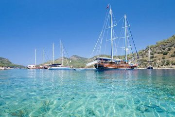 Single Sailing Adventure Holidays in the Caribbean - Yacht IBIS
