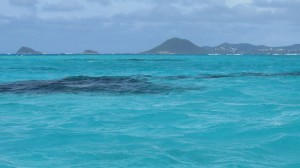 sailing the grenadines (7 of 126)